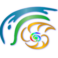 Icon Logo | Florida Medical Thermography | Florida | Image